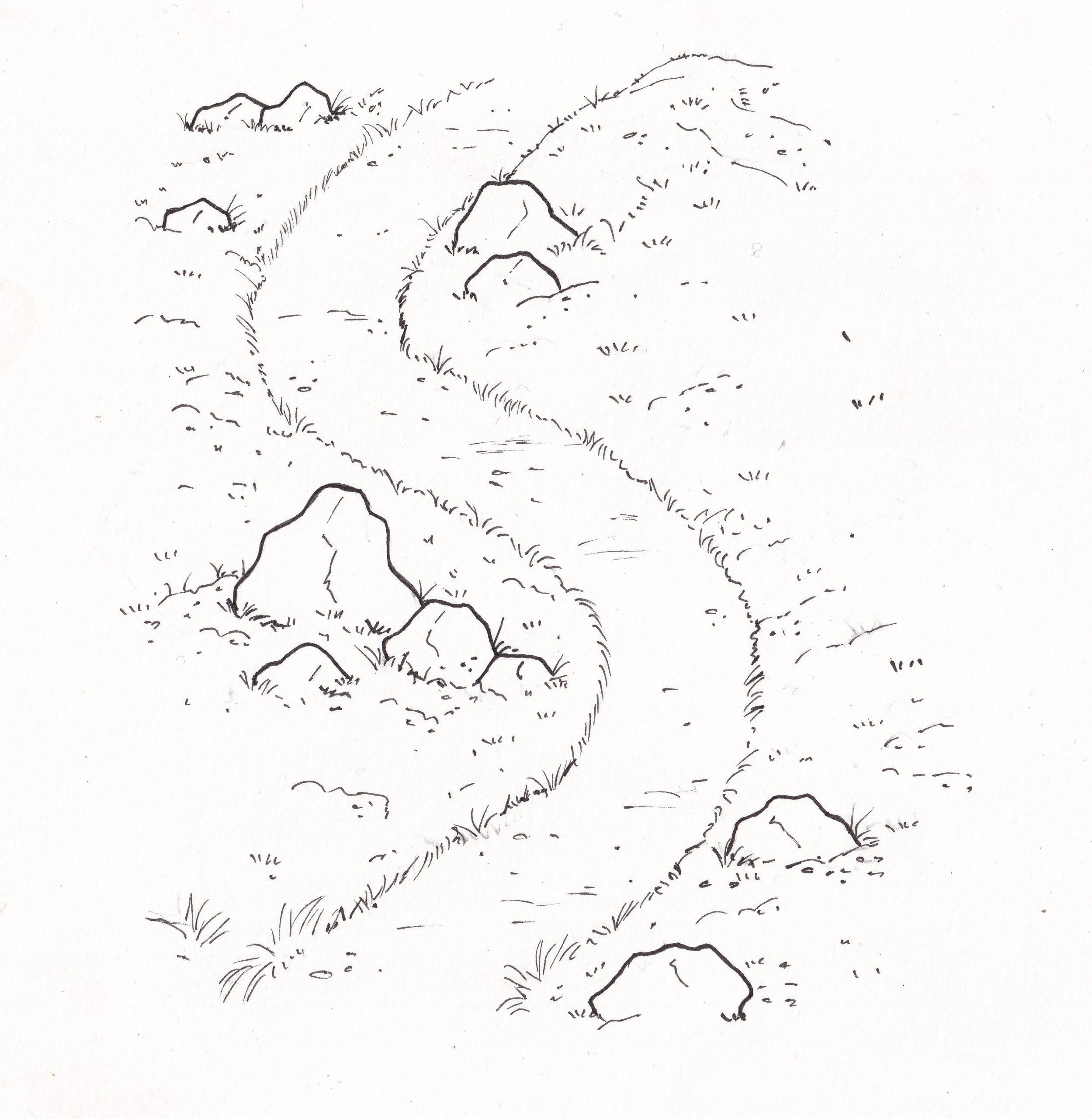 Landmótun rammar inn stíg og varnar gegn villustígum